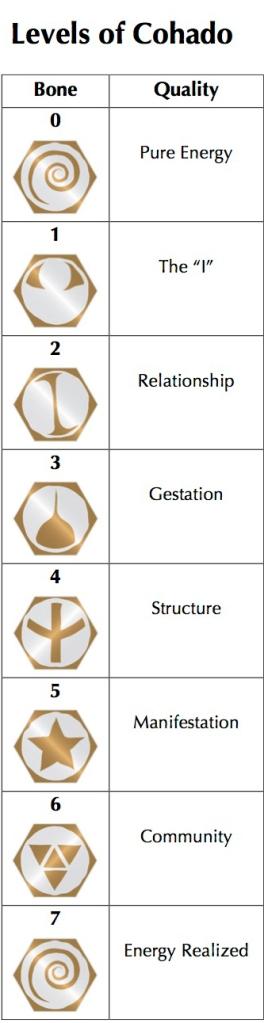 Cohado Levels Basic